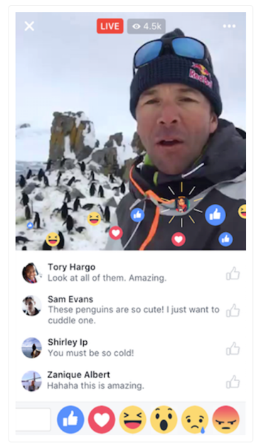 Facebook live 3.png