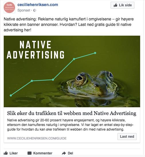 Native ads Facebook_7.png