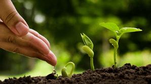 Hva er lead nurturing - og hvordan kan det øke salget?