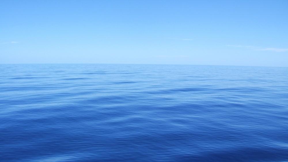 Blue Ocean-lederskap- Suksess kommer fra engasjerte medarbeidere -691117-edited.jpg