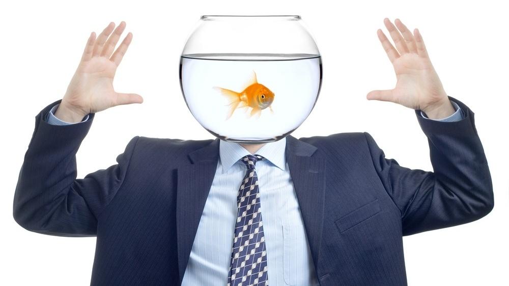 Hvordan skrive innhold for mennesker med «gullfisk hukommelse»_-800256-edited