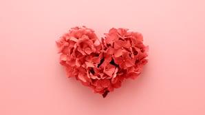Hjertesukk fra en webredaktør: Når kjærligheten til publiseringsverktøyet dør