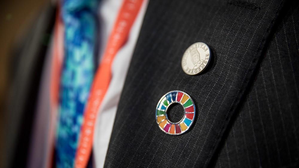 Hva er bærekraftig ledelse - Erlend