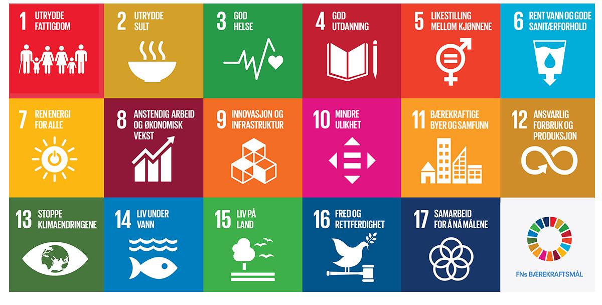 Hva er bærekraftig ledelse - FNs bærekraftsmål - Erlend - juni