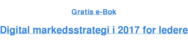 Gratis e-Bok  Digital markedsstrategi i 2017 for ledere